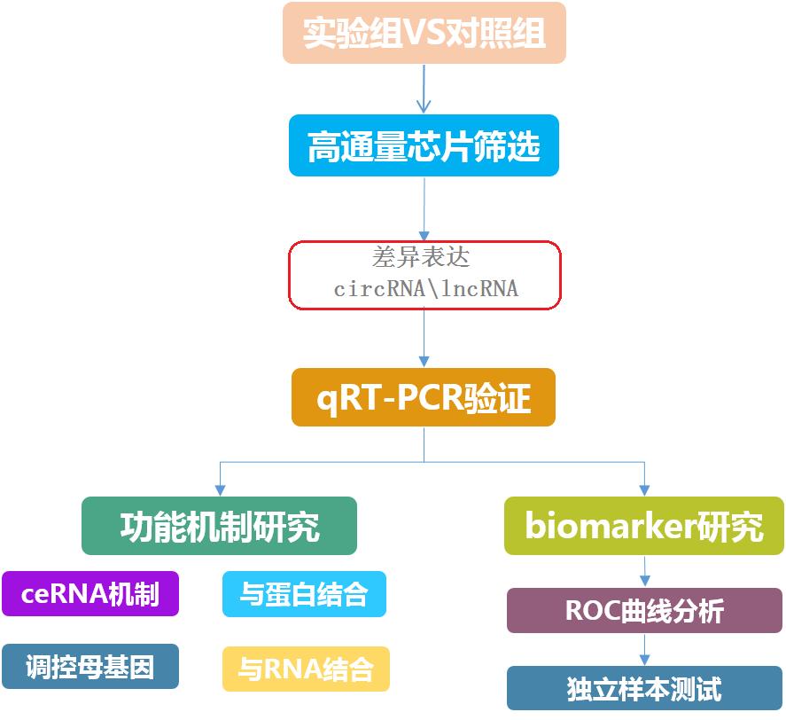 lncRNA、circRNA研究技术路线图